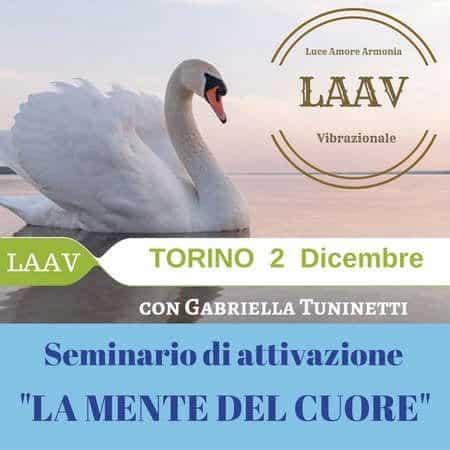 Seminario LAAV torino dicembre 2017