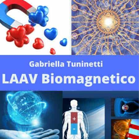 LAAV-biomagnetico