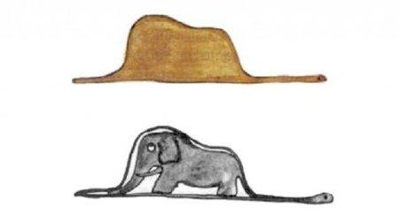 andare-oltre-le-apparenze-cappello-elefante
