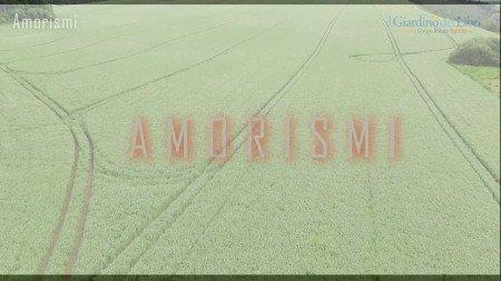 Amorismi-Giardino-dei-Libri-Alla-Ricerca-dellAnima-450x253-1